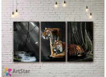 Модульные картины с животными, Art. AMM778000