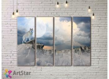 Модульные картины с животными, Art. AMM778046