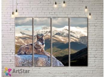 Модульные картины с животными, Art. AMM778060