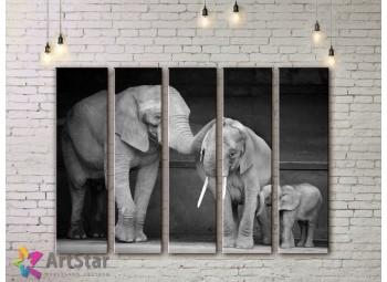 Модульные картины с животными, Art. ANIM778070