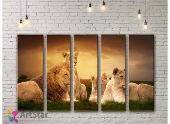 Модульные картины с животными, Art. ANIM778088
