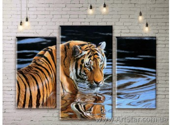 Модульные картины, Тигр