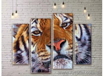 Модульные картины с животными, Art. ANIM777075