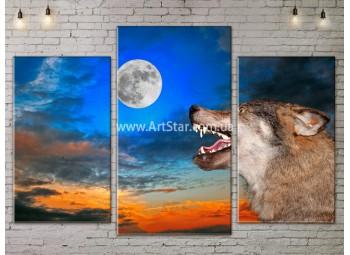 Модульные картины с животными, Art. ANIM778003