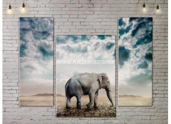 Модульные картины с животными, Art. ANIM778007