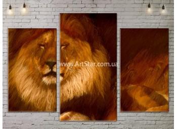 Модульные картины с животными, Art. ANIM778015