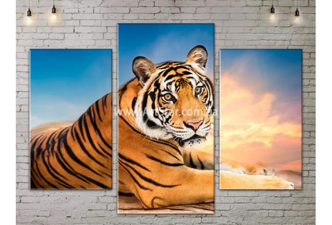 Модульные картины с животными, Art. ANIM778025