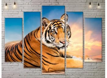 Модульные картины с животными, Art. ANIM778077