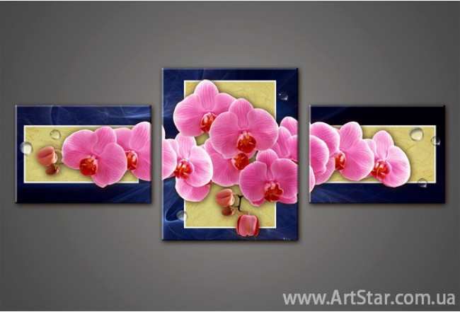 Модульная картина Орхидеи 4