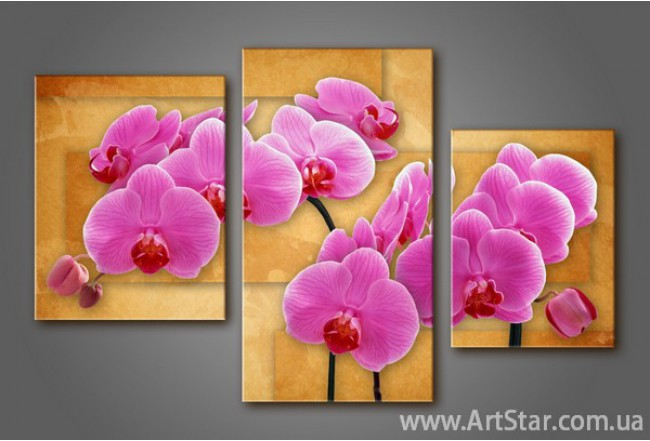 Модульная картина Орхидеи 8