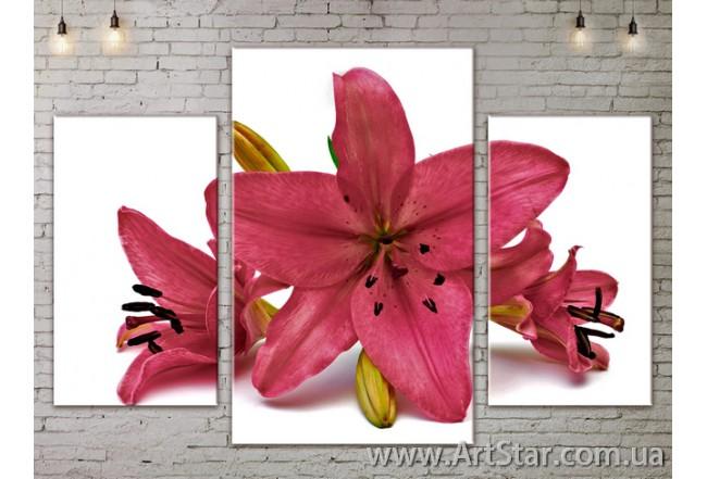Модульные Картины Цветы, Art. FLOW777005