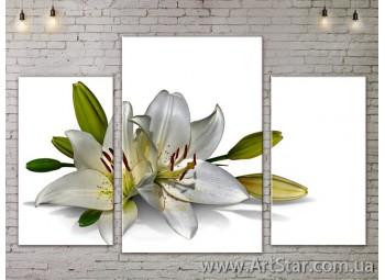 Модульные Картины Цветы, Art. FLOW777013