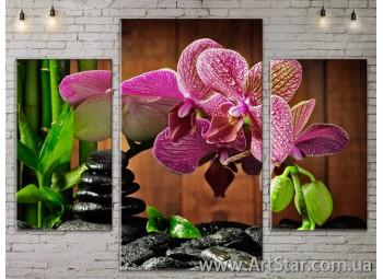 Модульные Картины Цветы, Art. FLOW777017