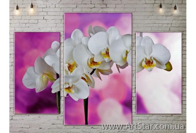Модульные Картины Цветы, Art. FLOW777051