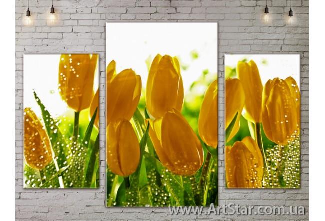 Модульные Картины Цветы, Art. FLOW777063