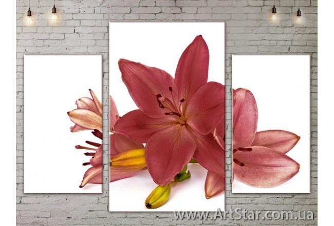 Модульные Картины Цветы, Art. FLOW777085