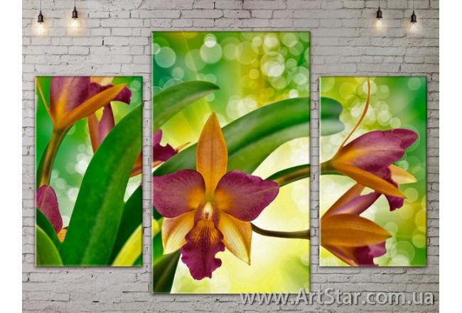 Модульные Картины Цветы, Art. FLOW777087