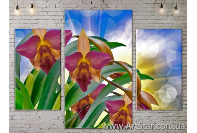 Модульные Картины Цветы, Art. FLOW777091