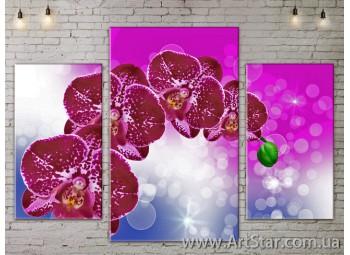 Модульные Картины Цветы, Art. FLOW777107