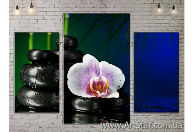 Модульные Картины Цветы, Art. FLOW777115