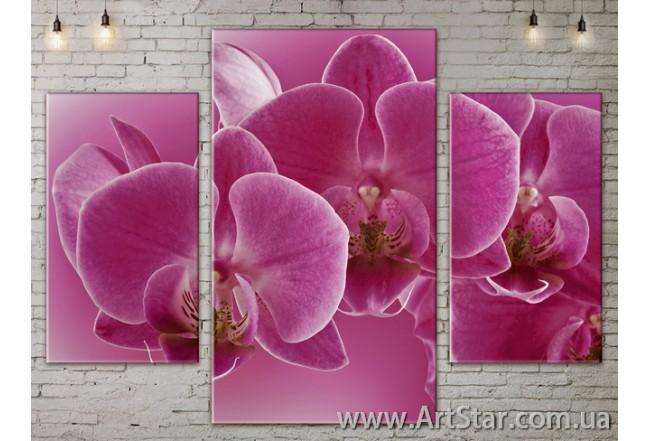 Модульные Картины Цветы, Art. FLOW777131