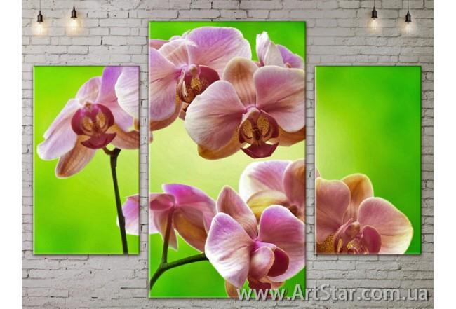 Модульные Картины Цветы, Art. FLOW777133