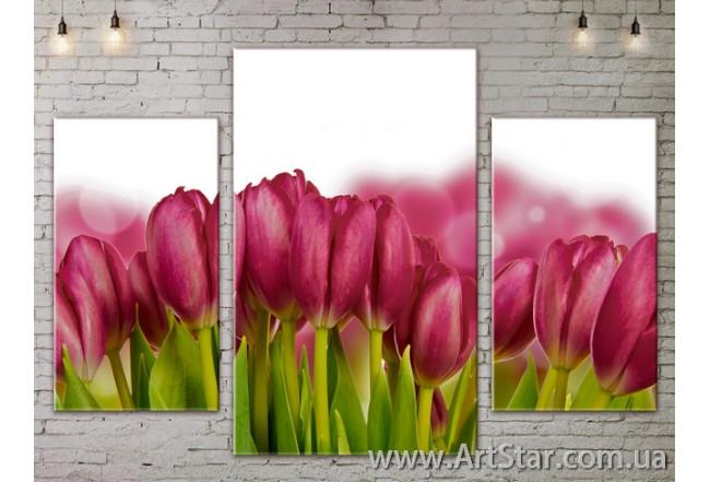 Модульные Картины Цветы, Art. FLOW777135