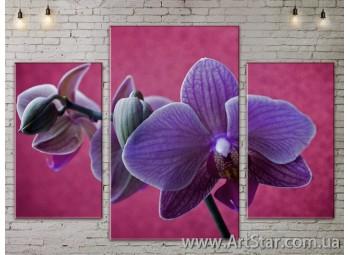 Модульные Картины Цветы, Art. FLOW777137