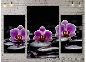 Модульные Картины Цветы, Art. FLOW777141