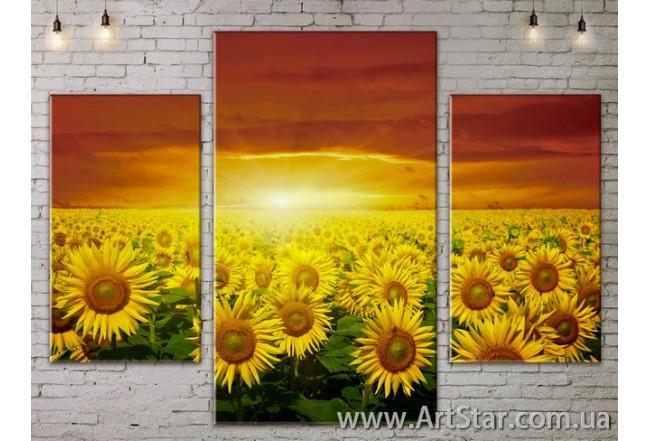 Модульные Картины Цветы, Art. FLOW777147