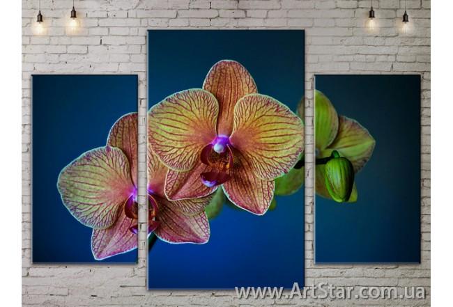 Модульные Картины Цветы, Art. FLOW777155