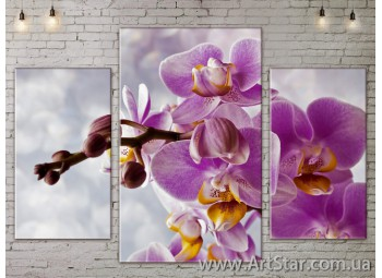 Модульные Картины Цветы, Art. FLOW777173