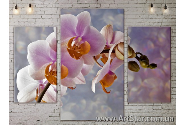 Модульные Картины Цветы, Art. FLOW777175