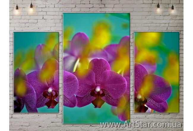 Модульные Картины Цветы, Art. FLOW777179
