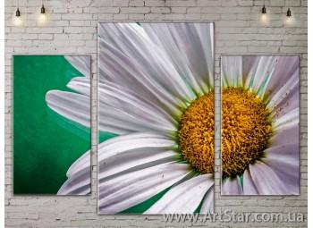 Модульные Картины Цветы, Art. FLOW777191