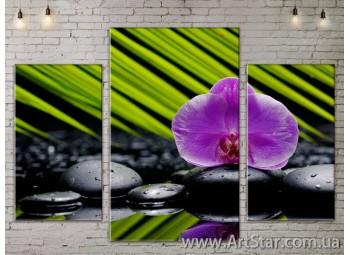 Модульные Картины Цветы, Art. FLOW777197