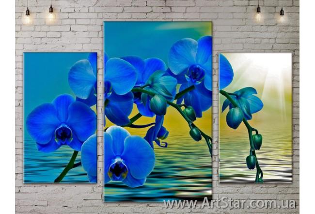 Модульные Картины Цветы, Art. FLOW777203