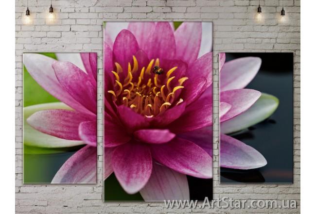 Модульные Картины Цветы, Art. FLOW777207