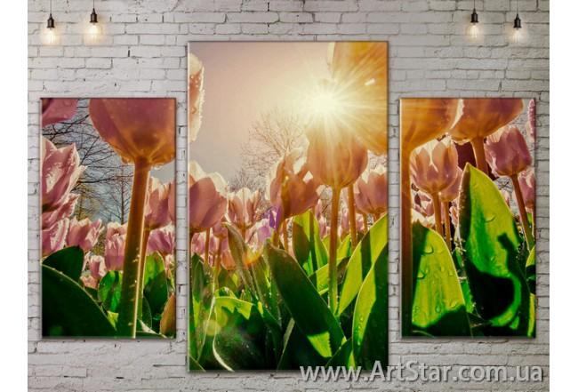 Модульные Картины Цветы, Art. FLOW777213