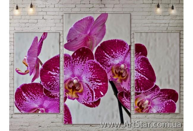 Модульные Картины Цветы, Art. FLOW777227