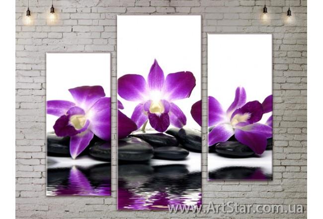 Модульные Картины, Цветы, Art. FLOW777237