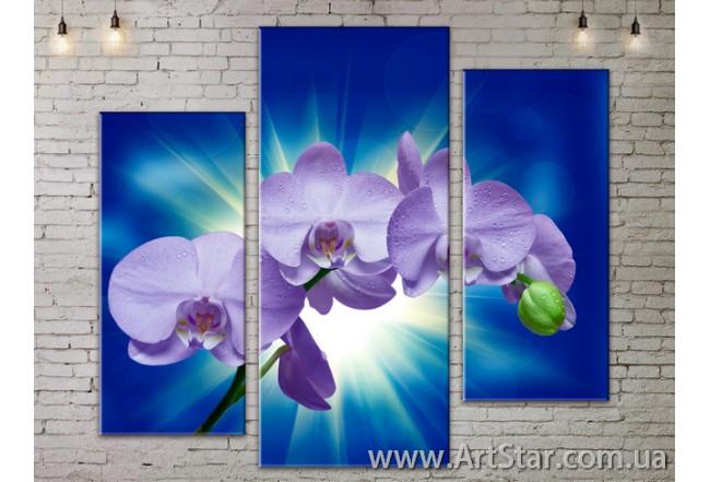 Модульные Картины, Цветы, Art. FLOW777241