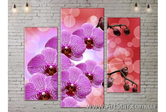 Модульные Картины, Цветы, Art. FLOW777249