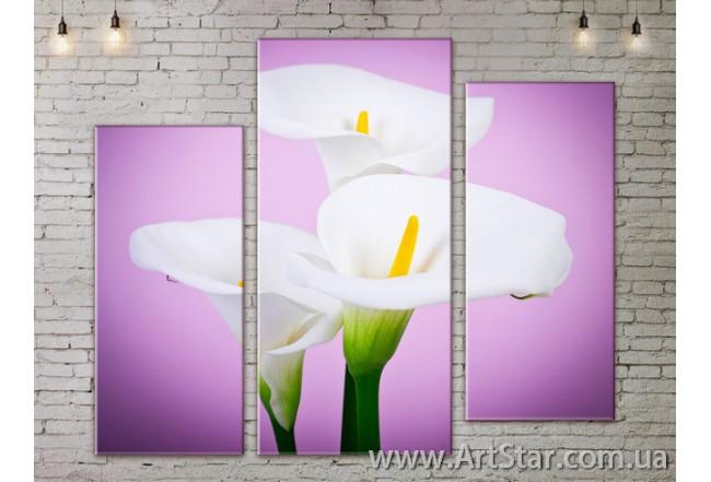 Модульные Картины, Цветы, Art. FLOW777253