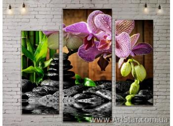 Модульные Картины, Цветы, Art. FLOW777261