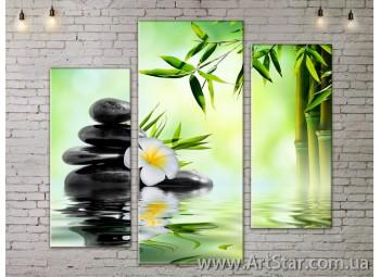 Модульные Картины, Цветы, Art. FLOW777265