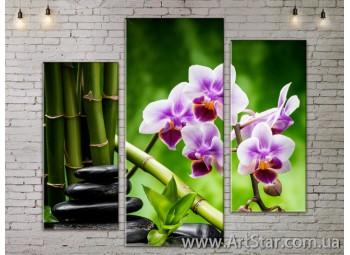 Модульные Картины, Цветы, Art. FLOW777271