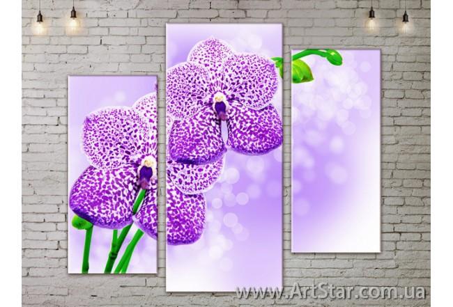Модульные Картины, Цветы, Art. FLOW777281