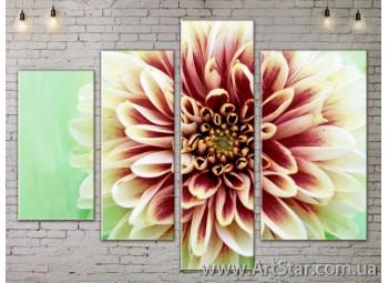 Модульные Картины, Цветы, Art. FLOW777284-1