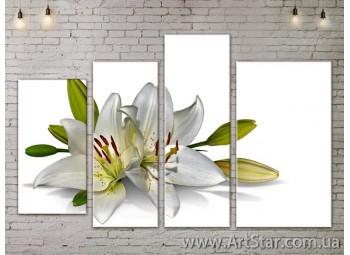 Модульные Картины, Цветы, Art. FLOW777294